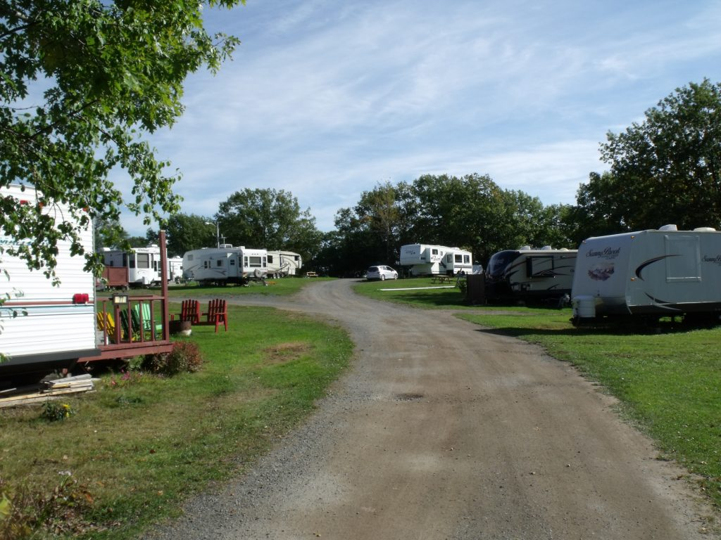 Image of the hill section of Harbour Light Campground.