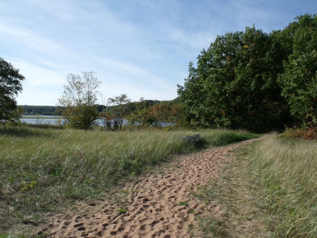 Image of the path leading back to Harbour Light Campground.