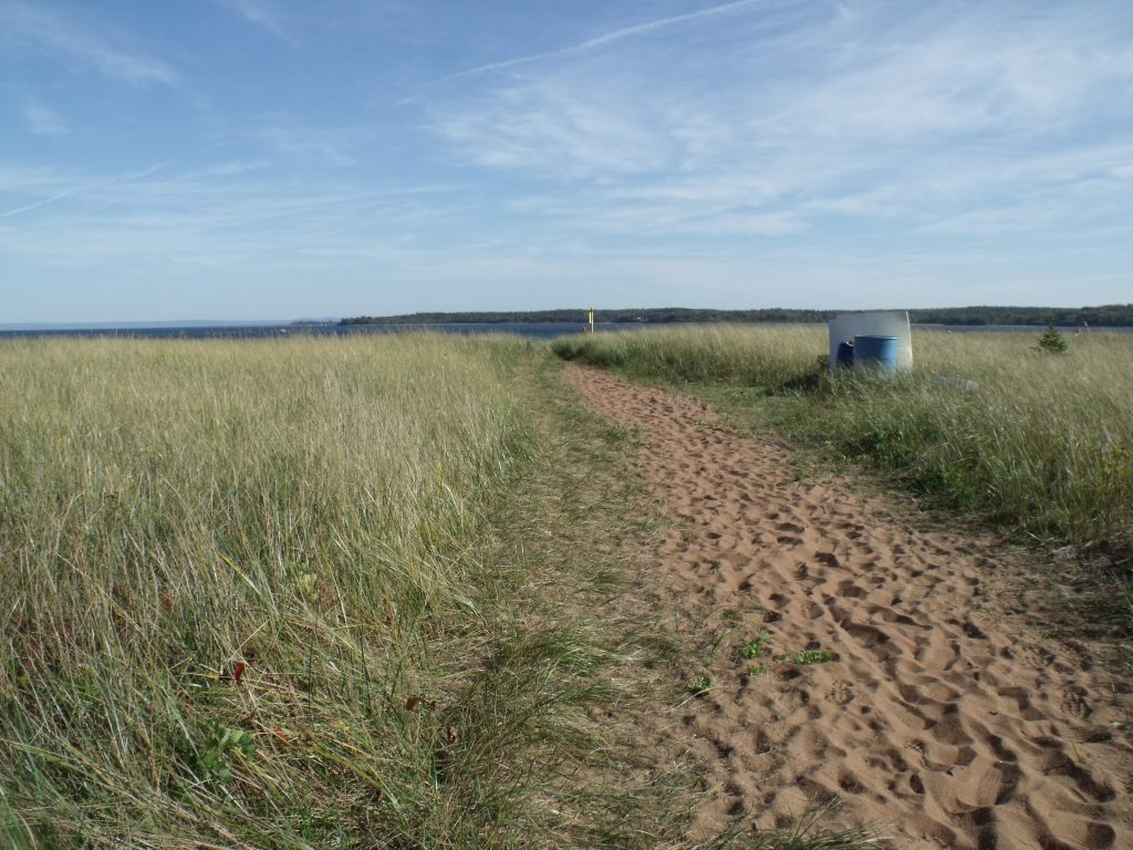 Image of the path to the beach at Harbour Light Campground. 3
