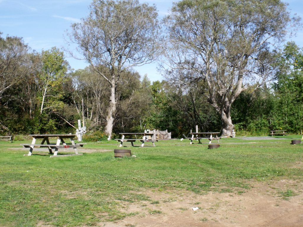 Image of full service sites at Harbour Light Campground.
