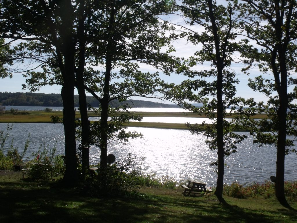 3 Image of the view of Harbour Light Campground, overlooking the water and close to the beach.