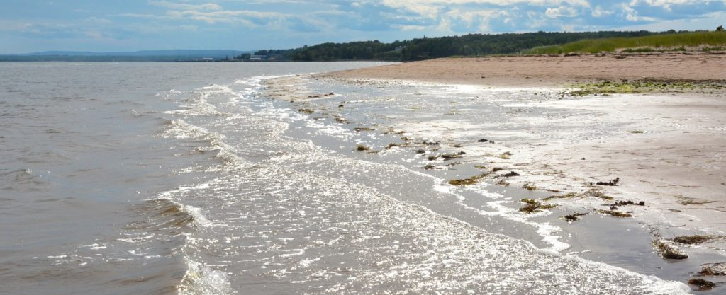 Image of the beach at Harbour Light Campground, Pictou NS.